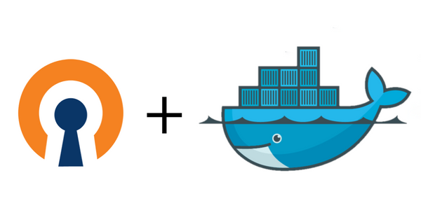 Setting up a OpenVPN gateway using docker containers